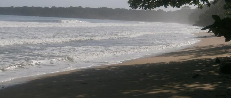 10+ Gründe für einen Urlaub in Costa Rica