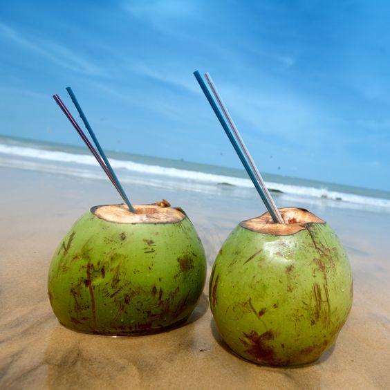Kokosnuss trinken Costa Rica