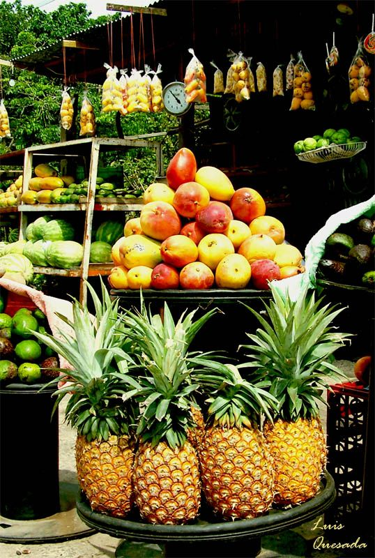 Reife Früchte Costa Rica