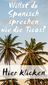 Tico Slang Guide