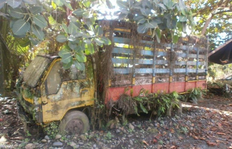 Ein Lastwagen in Cahuita