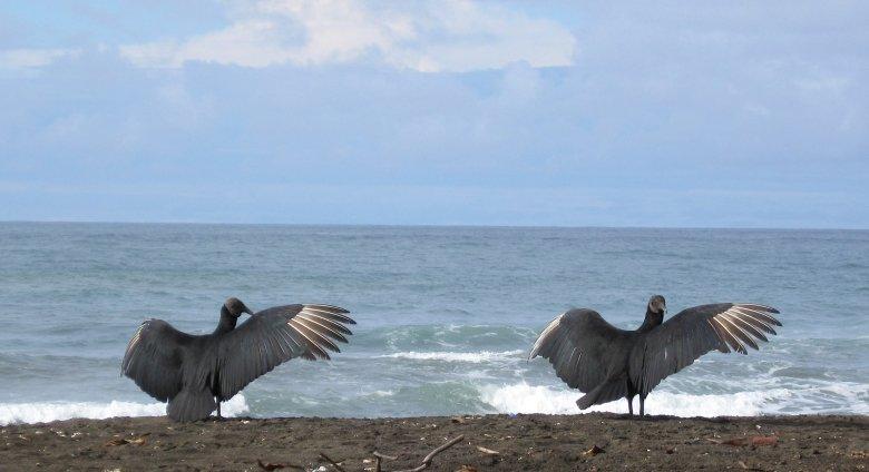 Gruppenreise Costa Rica