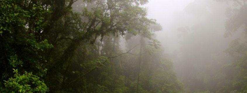 Auf die Regenzeit in Costa Rica vorbereiten