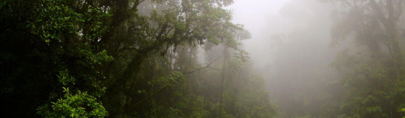 So bereitest du dich in Costa Rica auf die Regenzeit vor (wichtig für Hausbesitzer)