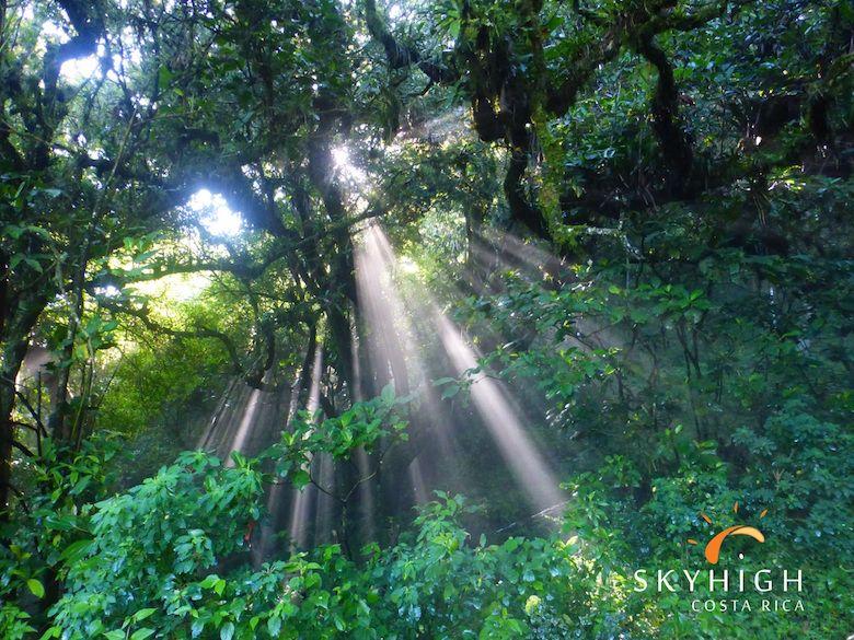 Wanderwege Costa Rica