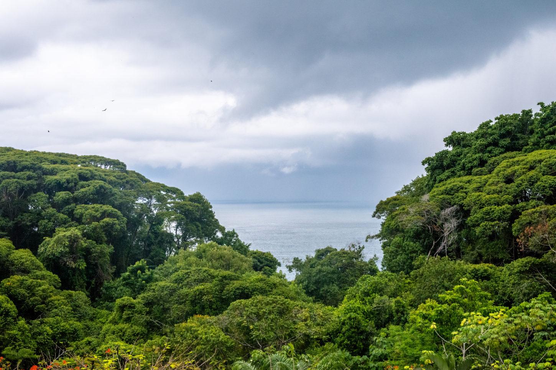 Zentralpazifikküste Costa Rica: Die besten Aktivitäten