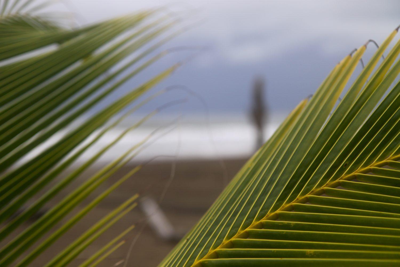 Strand-Costa-Rica-Tropenbooking