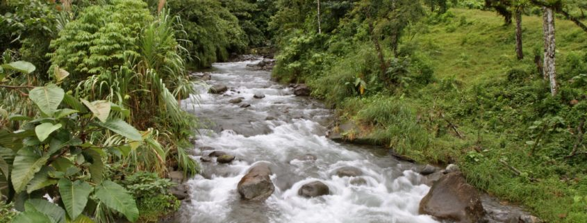 Fluss-auf-dem-Weg-nach-La-Fortuna
