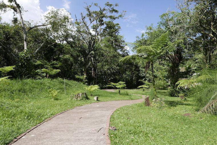 Austauschschüler Costa Rica