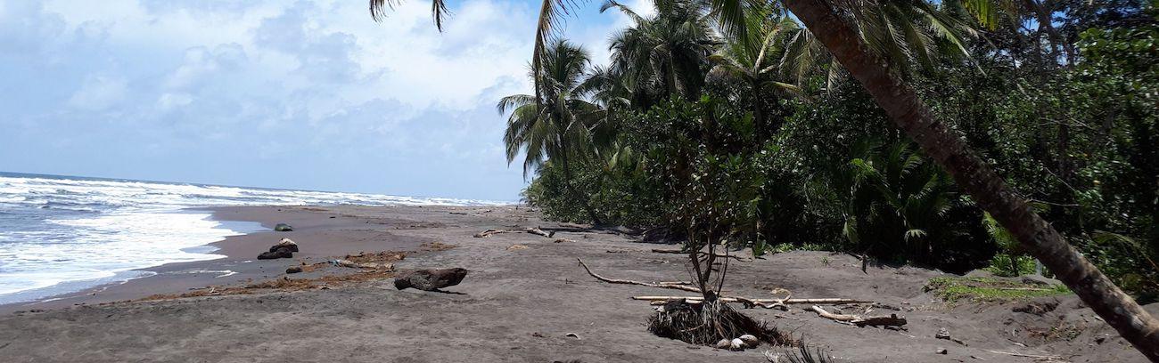 Mit Familie in Costa Rica ? – Ein kurzer Reisebericht