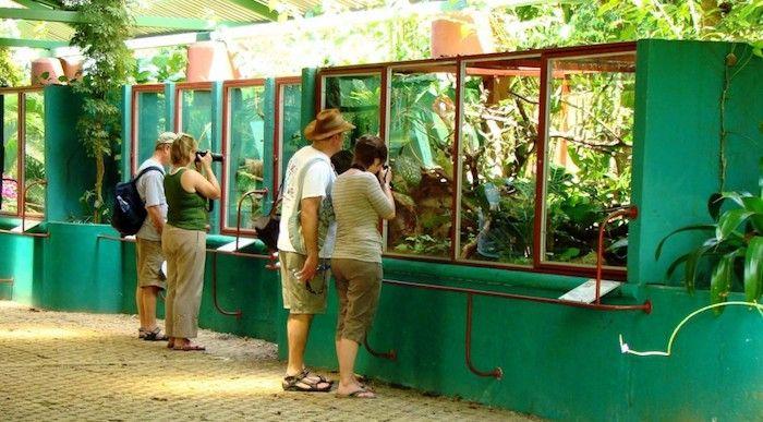 Reptilienpark Costa Rica